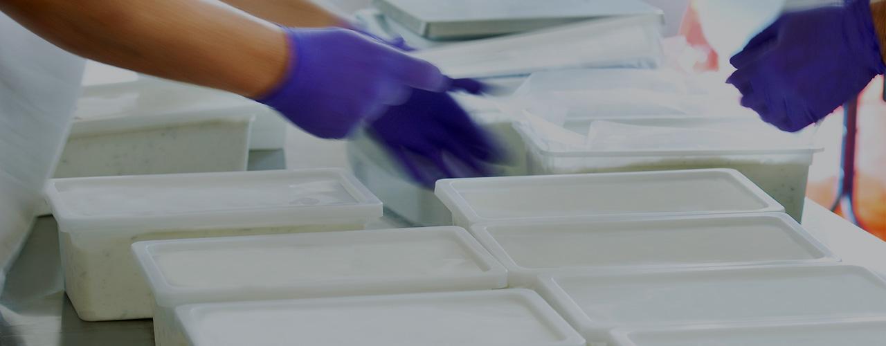 HACCP Plan and Training