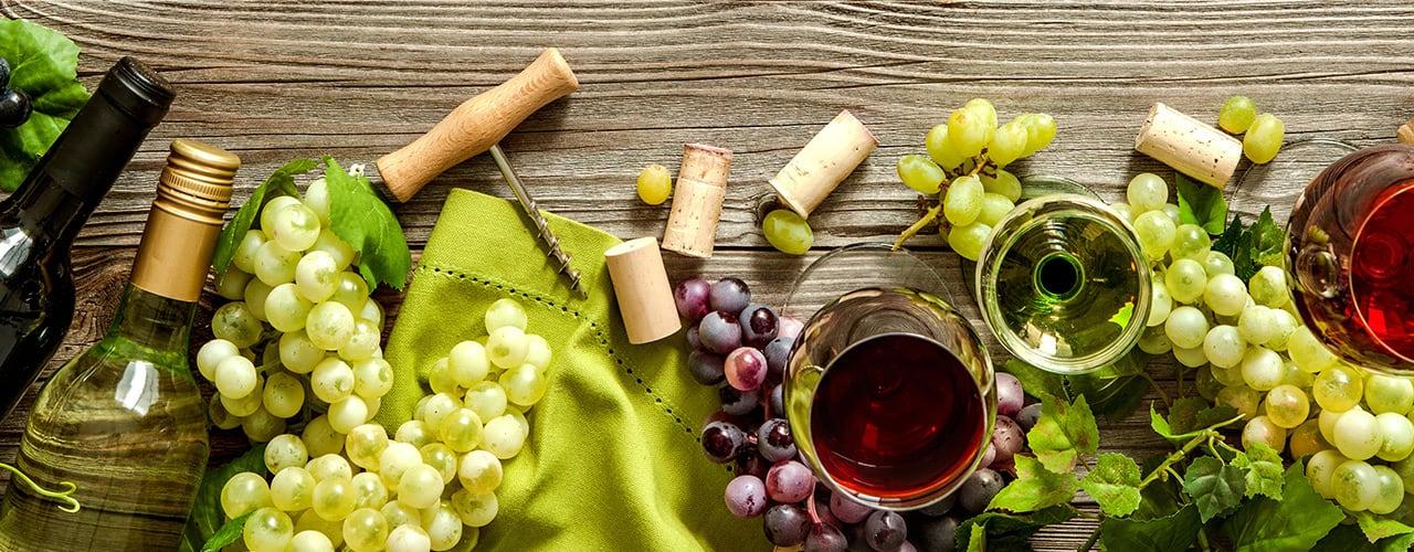 Wine Tasting Room Basics