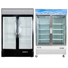 2 Section Glass Door Merchandising Freezers