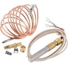 Pilot Thermocouples and Flame Sensors