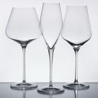 Quatrophil Stolzle Glasses