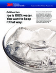 3M Ice Brochure