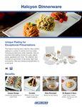 Halcyon Dinnerware Brochure