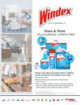 Windex Glass and More Specsheet