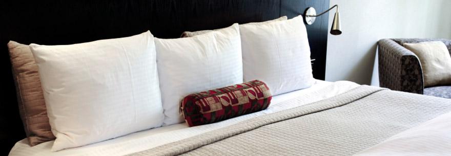 Bed Bug Mattress Encasements Guide