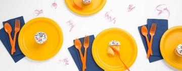 Disposable Dinnerware Buying Guide
