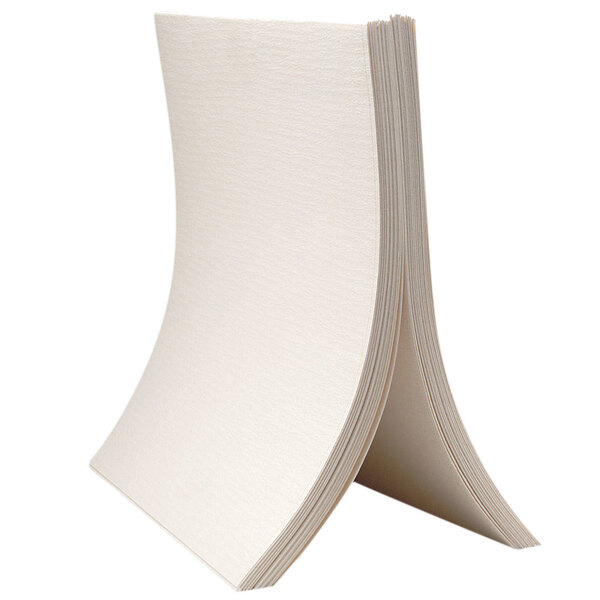 Scratch and Dent Pitco A6667103 Heavy-Duty Envelope Style Filter Paper - 100/Box Main Image 1