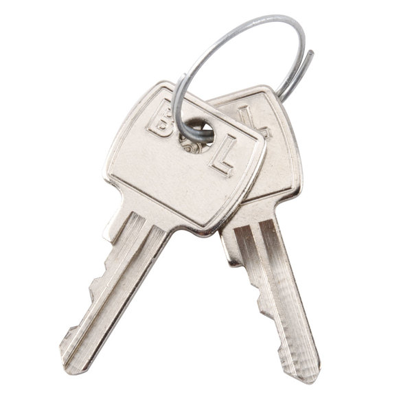 Edlund KY001 Replacement Key for KLC-994 Locking Knife Cabinet - 2/Set Main Image 1