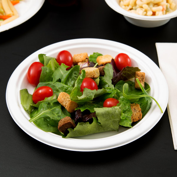 """EcoChoice Biodegradable, Compostable Sugarcane / Bagasse 9"""" Plate - 125/Pack"""