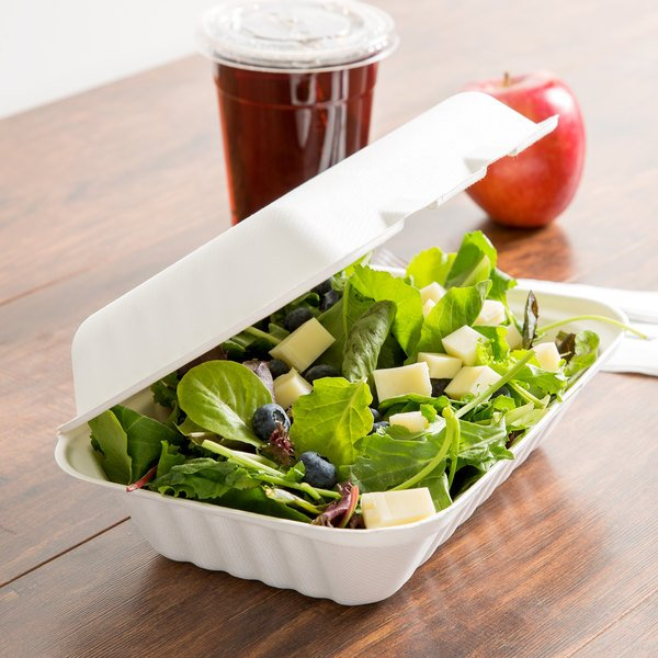 "EcoChoice 9"" x 6"" x 3"" Biodegradable, Compostable Sugarcane / Bagasse 1 Compartment Takeout Container - 50/Pack"