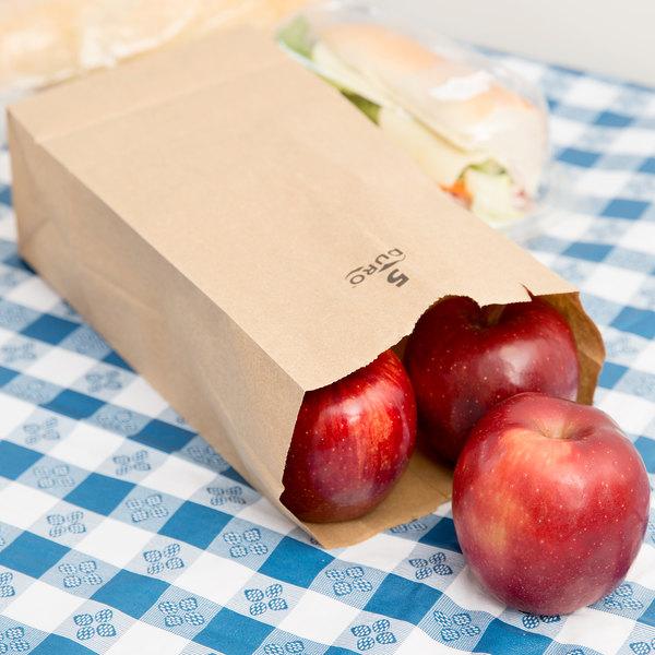 Duro 5 lb. Brown Paper Bag - 500/Bundle