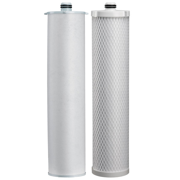 Everpure EV9105-21 302E Filter Cartridge Kit - .5 Micron and 5 GPM