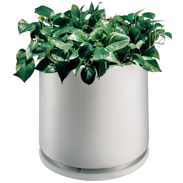 """Commercial Zone 74030699 White Planter and Dish - 22"""" x 19"""""""
