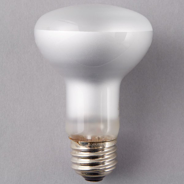 Frosted Light Bulbs >> Satco S4514 45 Watt Warm White Frosted Halogen Flood Lamp Light Bulb 120v R20