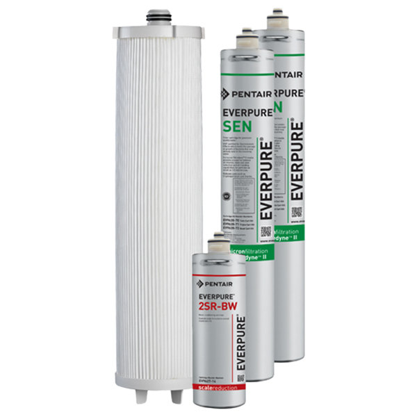 Everpure EV9628-70 Endurance High Flow Twin Cartridge Kit - .2 Micron and 7.5 GPM