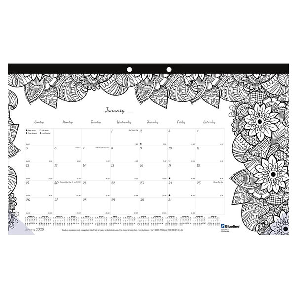 """Blueline CA2917001 DoodlePlan 17 3/4"""" x 10 7/8"""" White Monthly Academic August 2019 - July 2020 Desk Pad Calendar with Coloring Pages"""