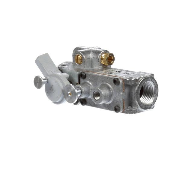 Southbend 1174340 Gas Valve, Combinat