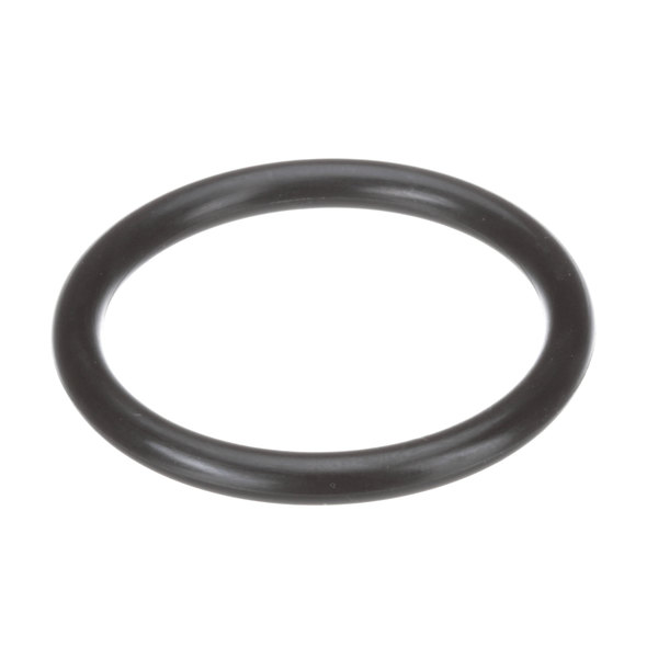 Encore D10-X021 O-Ring Main Image 1