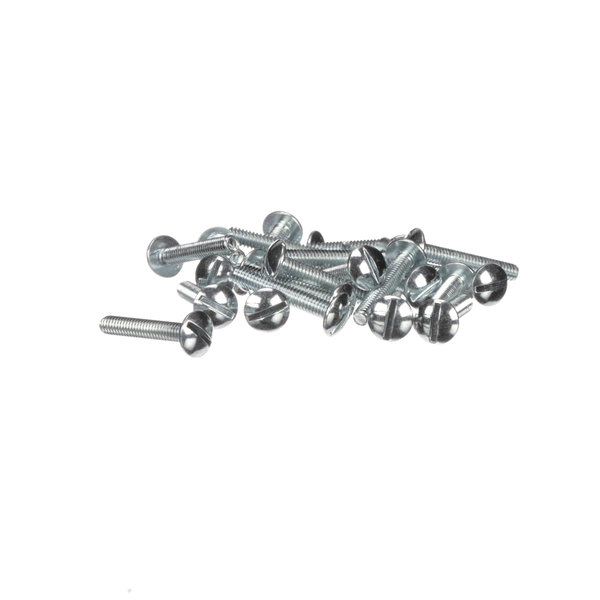 Frymaster 8261361 Screw, (8090111) - 25/Pack Main Image 1