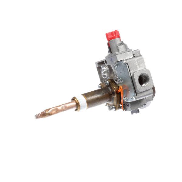 A.O. Smith 100109691 Thermostat