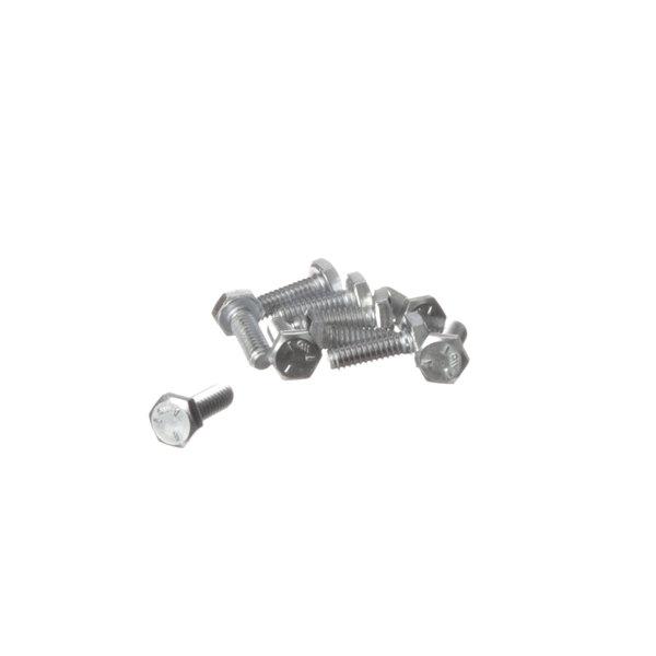 Frymaster 8261389 Screw, (8090131) - 10/Pack Main Image 1