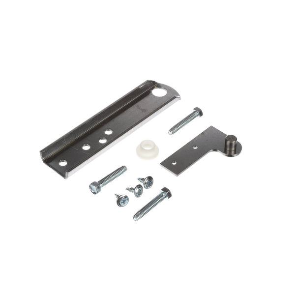 True Refrigeration 879256 Hinge Kit Center Main Image 1