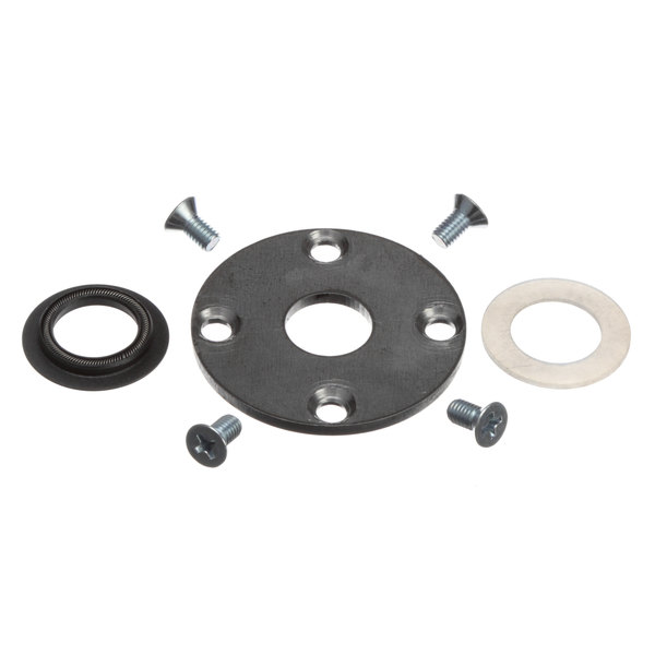 Blodgett 53899 Seal, Motor Shaft Kit