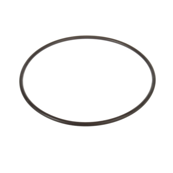 SaniServ 58986 O-Ring Door