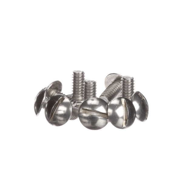 Antunes 325P132 Screws - 10/Pack