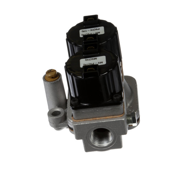 Groen Z098444 Gas Valve Lp
