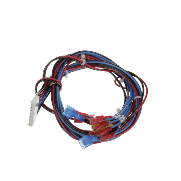 Groen 130450 Wire Harness-Cntl Brd