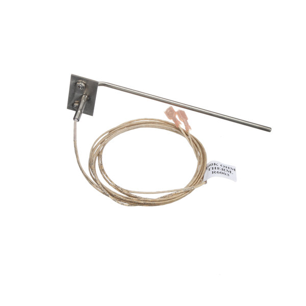 Blodgett R6003 Probe, Therm Main Image 1