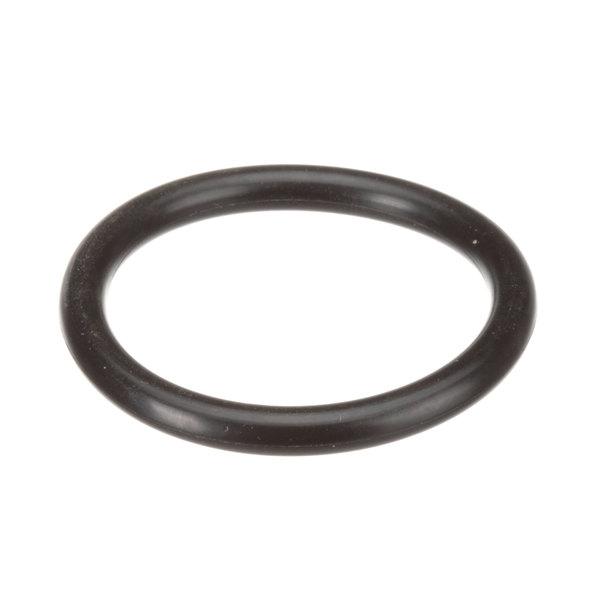 Insinger D2-550 O-Ring