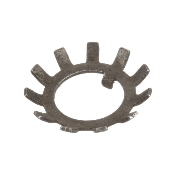 Blakeslee 16080 Lock Washer Main Image 1