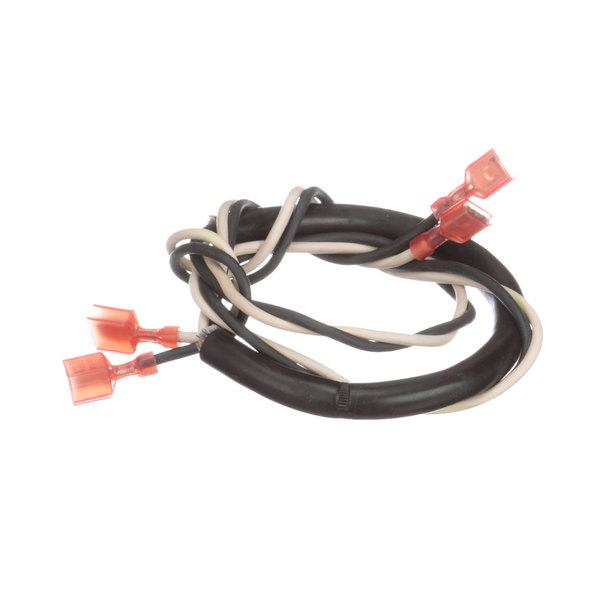 Blodgett R2385 Harness ; Door Switch