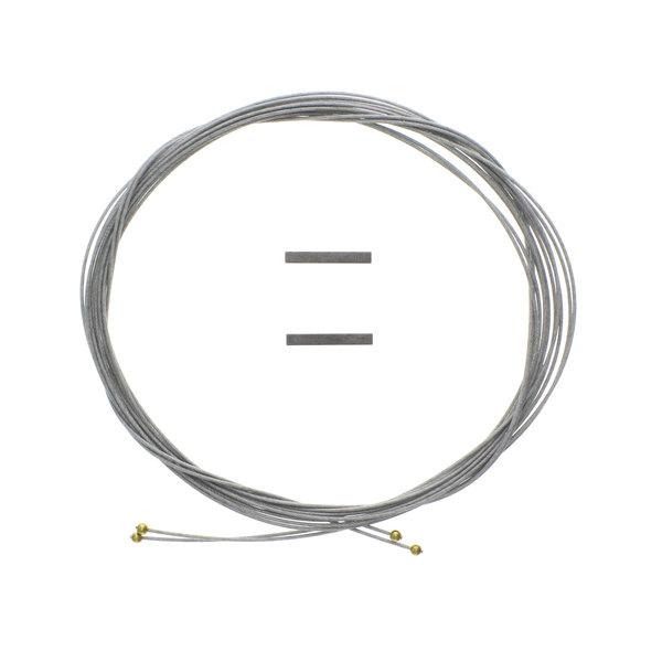 APW Wyott 20685300 Cable Kit Main Image 1