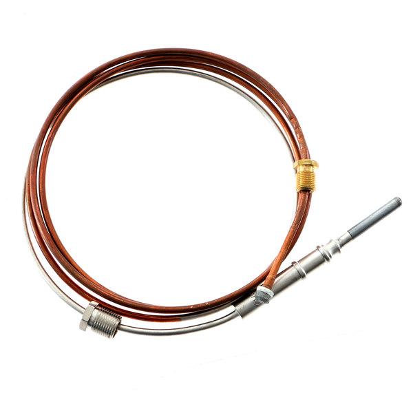 Blodgett 3835 Thermocouple 60 In