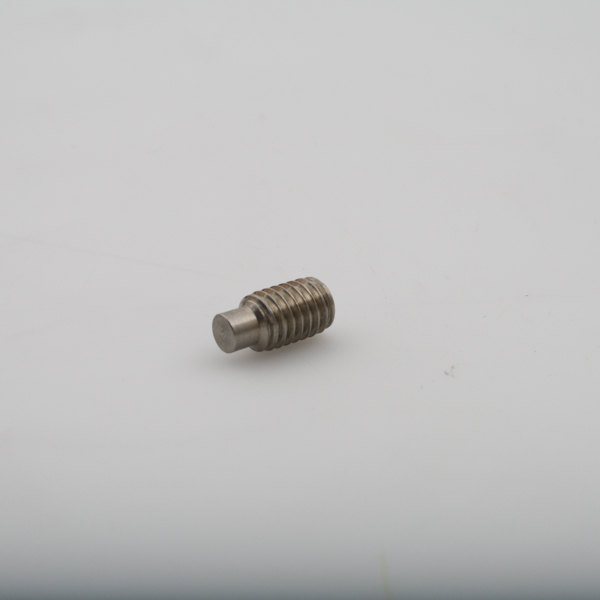 Champion 100769 Screw Set