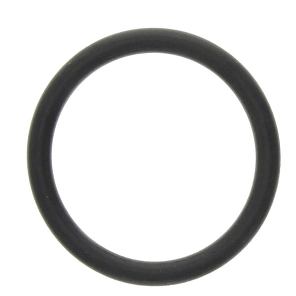 InSinkErator 12859 O-Ring Main Image 1
