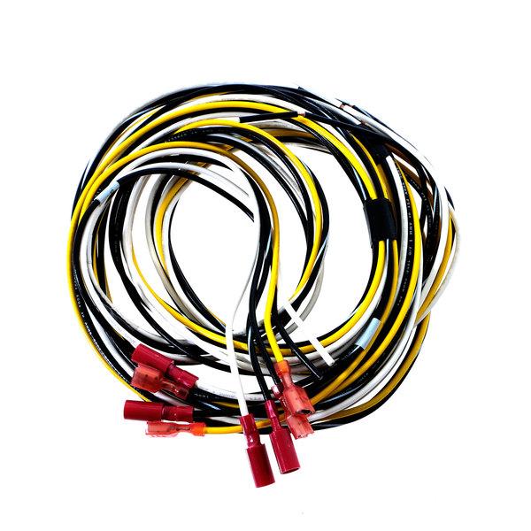 Traulsen 333-29416-00 Wiring Harness