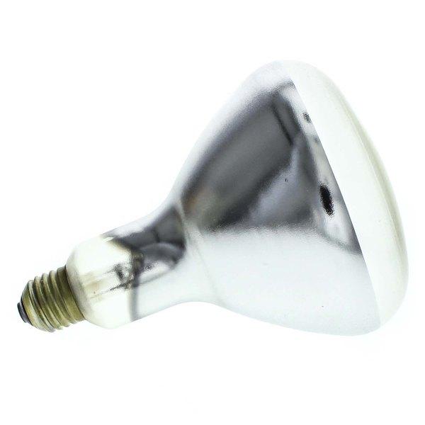 Alto-Shaam LP-33781 Lamp Main Image 1