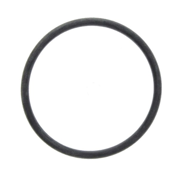 SaniServ 541029 Door O-Ring Main Image 1