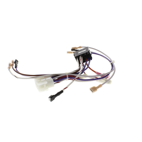 Cleveland 300125 Wire Harness;Elec; Ctrl Panel