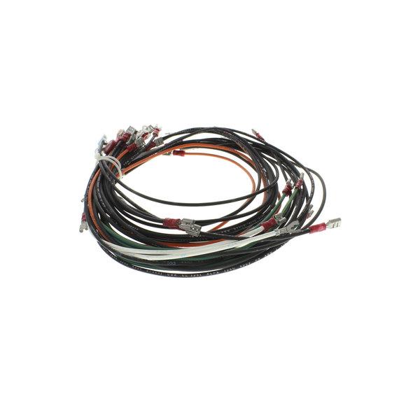 Frymaster WIR0583SP Wire Assy, Gc/Gbc/Gsms W/O Bl Main Image 1