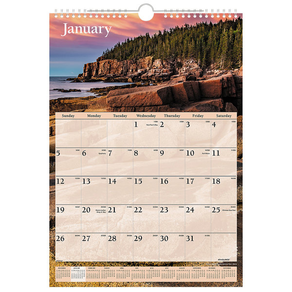 "At-A-Glance DMW20028 12"" x 17"" Scenic Monthly January 2020 - December 2020 Wirebound Wall Calendar"