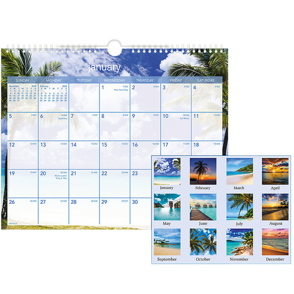 """At-A-Glance DMWTE828 15"""" x 12"""" Tropical Escape Monthly January 2020 - December 2020 Wirebound Wall Calendar"""