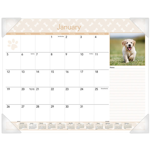 """At-A-Glance DMD16632 22"""" x 17"""" Monthly January 2020 - December 2020 Puppies Desk Pad Calendar"""