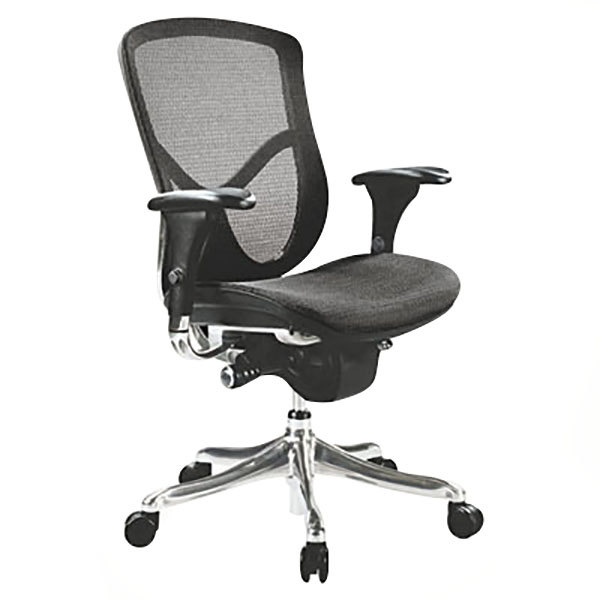 Alera ALEEQA42ME10A EQ Series High-Back Multifunction Black Mesh Office Chair with Adjustable Arms and Aluminum Swivel Base