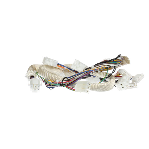 Pitco B6781501 Spinal Tap Wire Harness