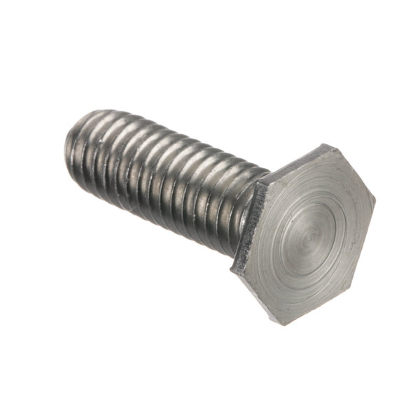 Berkel 01-402175-00529 Hex Head Screw Main Image 1